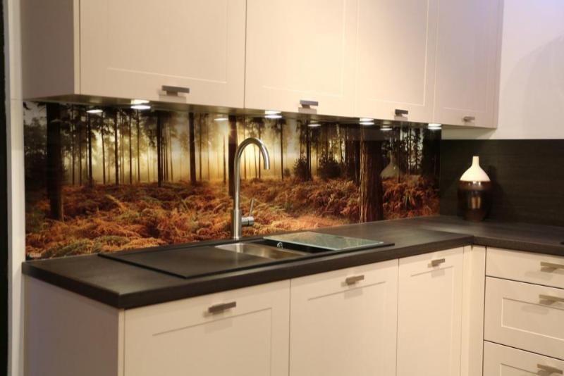 севере стеклянный кухонный фартук фото можете поделиться своими